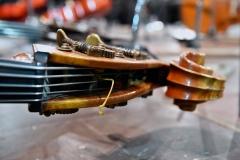 Concerto Carlo Felice al Pianacci - foto Giorgio Scarfi 01_rid