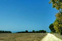 Sardegna_16set2019_8475c_fotoSusanna_versoSeu-rid