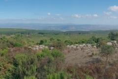 Sardegna_27set2019_2461c2_MonteArci-rid