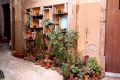 Sardegna_17set2019_4890c_SantuLussurgiu-rid