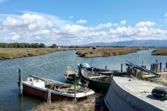 Sardegna_24set2019_8694c_fotoSusanna_SenArrubia-rid