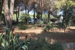 Sardegna_29set2019_6091c_SaPintadera-rid